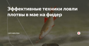 Зимний фидер — читайте на Сatcher.fish